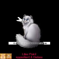 Presantation de Yamina2002 Simple.php?id=05IYWKdCbL&